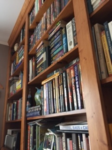 One of many bookshelves in our house.