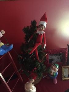 Jasper resting atop the miniature Elf tree.