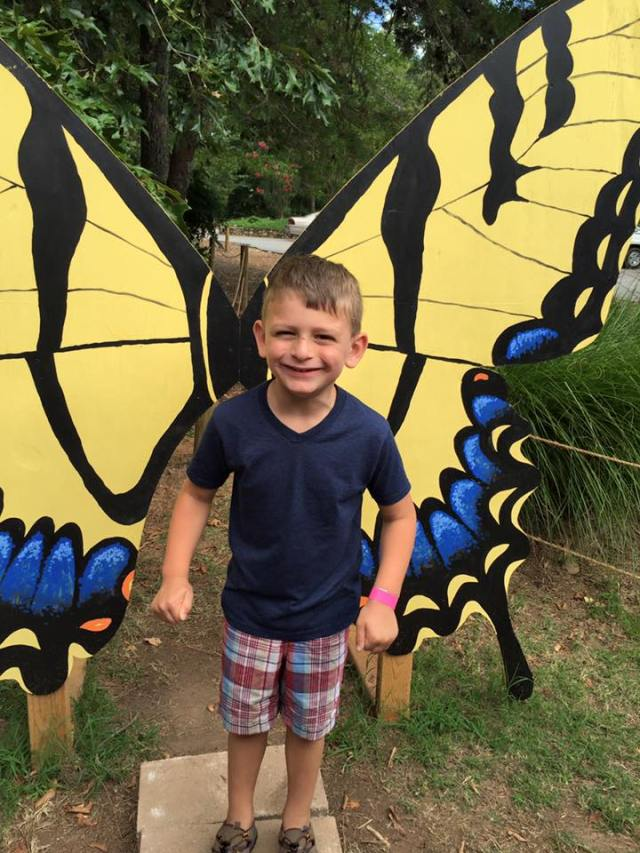 butterfly adventure davey